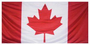 Au Canada, la vague d'overdoses bénéficie aux dons d'organes