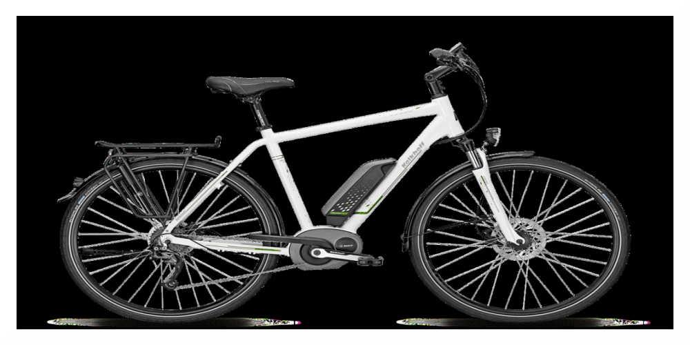 Écologie : fin de la prime au vélo électrique
