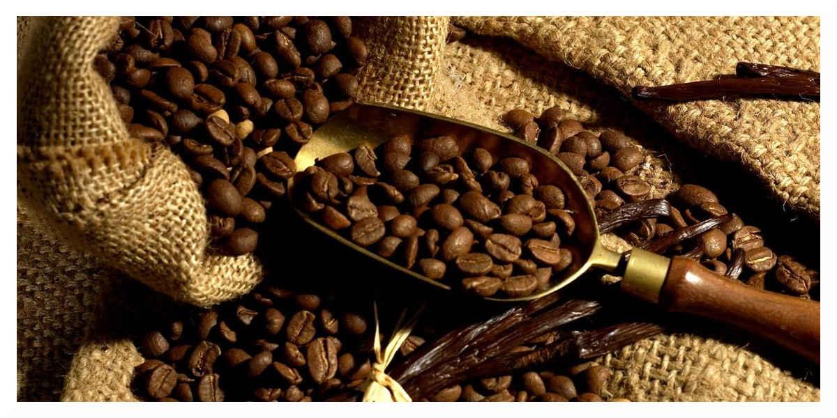 Boire 3 à 4 tasses de café par jour pour vivre plus longtemps ?