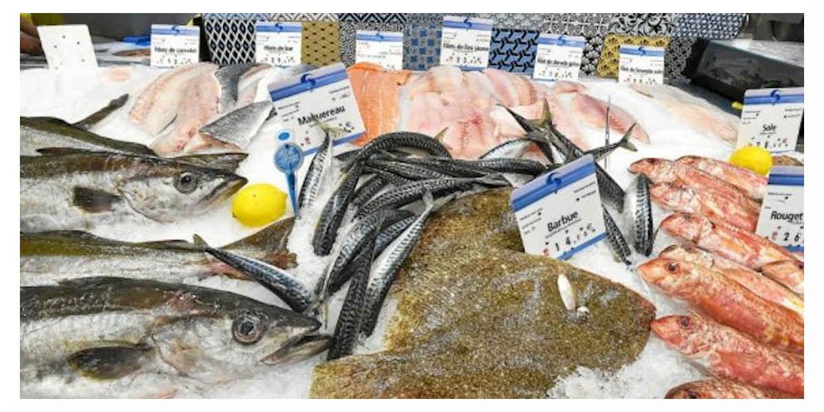 Etale de poissons