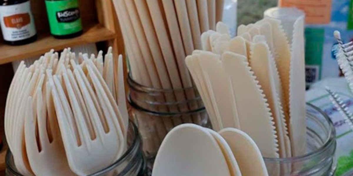 Entrée en vigueur de la directive européenne sur l'interdiction des plastiques à usage unique